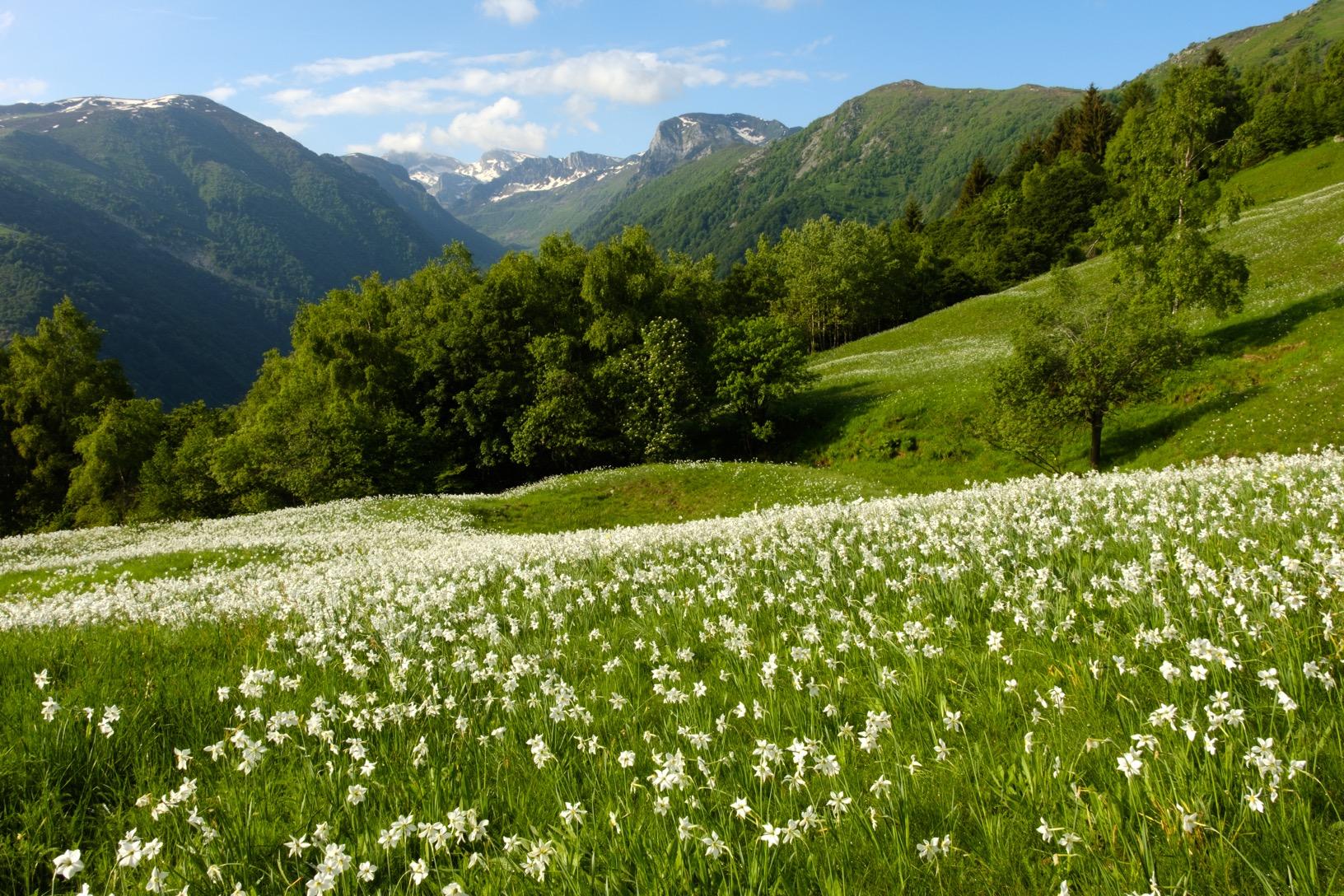 cuneotrekking-primavera